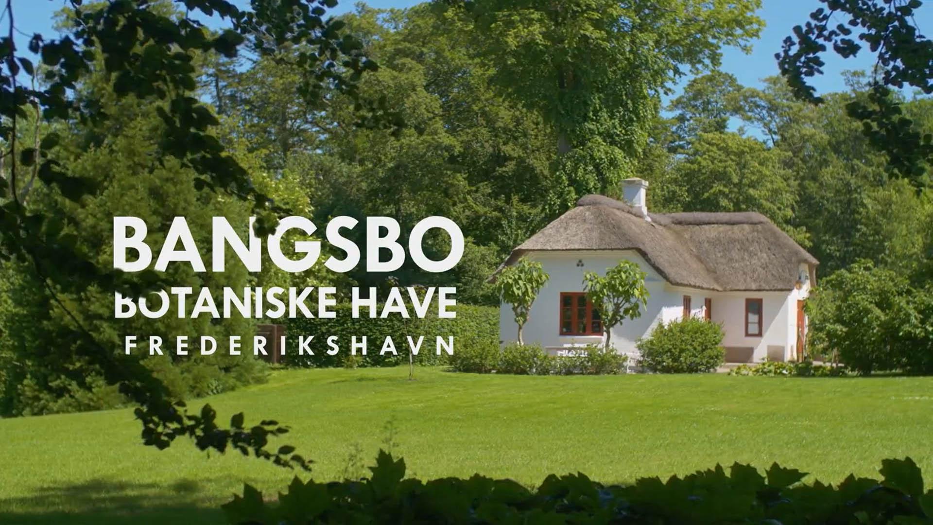 Bangsbo Botaniske Have – Oplev naturen i Frederikshavn